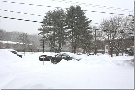 snowed3