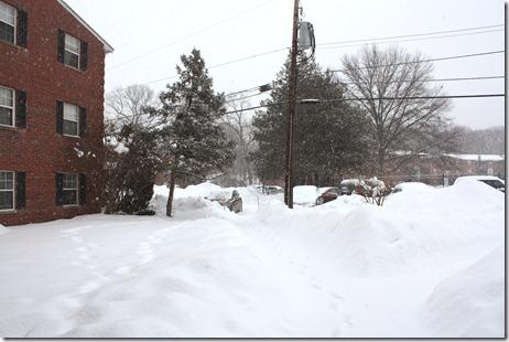 snowed in again